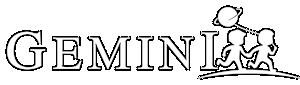 Gemini Smart
